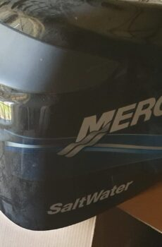 Calandra 115 hp Mercury